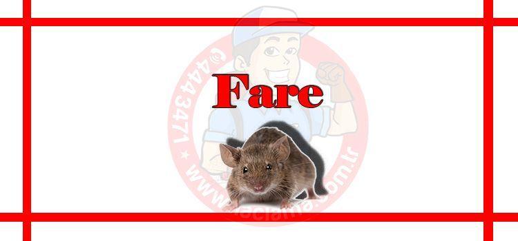 fare hakkında bilgi