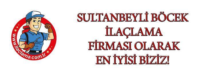 sultanbeyli-böcek-ilaçlama