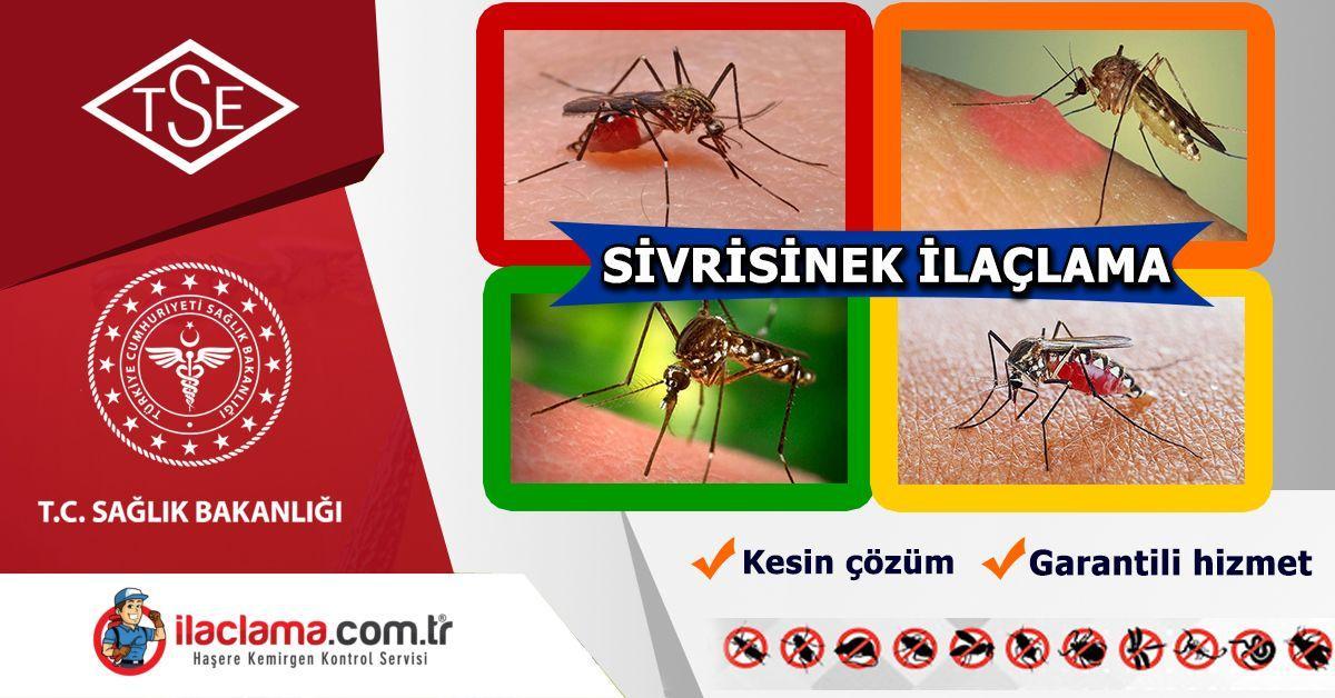sivri-sinek-ilaçlama, sivrisinek-fiyat