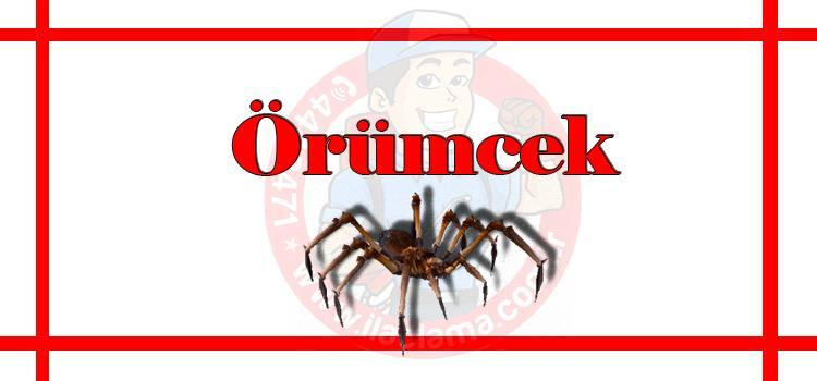 örümcek-ilaçlama-istanbul, örümcek-ilaçlama-fiyat