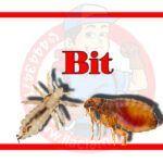 çekmeköy Böcek ilaçlama Firması
