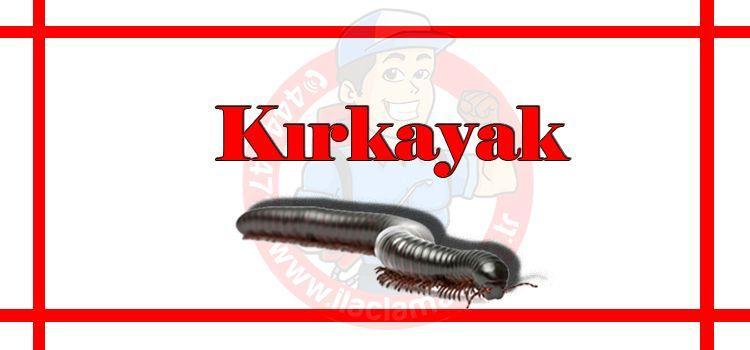 kırkayak-ilaçlama-istanbul, kırkayak-ilaçlama-fiyat