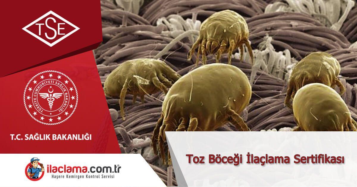 Toz Böceği ilaçlama Sertifikası