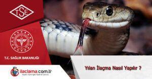 yılan-ilaçlama-istanbul, yılan-ilaçlama-fiyatları