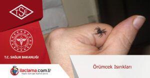 örümcek-kovucular