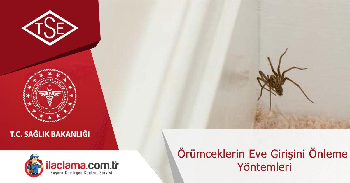örümceklerin-eve-girişini-önleme-yöntemleri