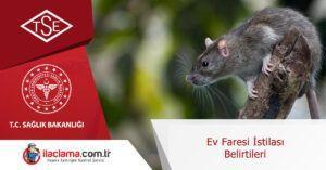 ev-faresi-istilası-belirtileri