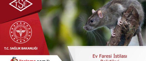 Ev faresi istilası belirtileri
