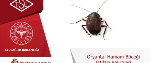 Oryantal hamam böceği istilası belirtileri
