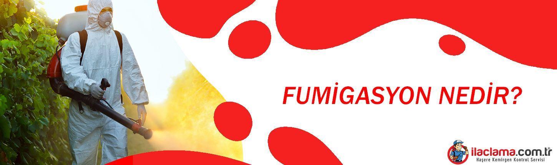 fumigasyon banner 2
